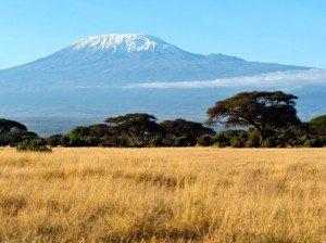 KilimanjaroPic